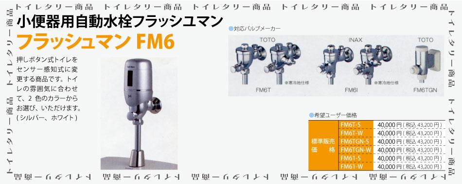 フラッシュマンFM6